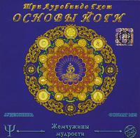 Основы йоги (аудиокнига МР3). Шри Ауробиндо Гхош
