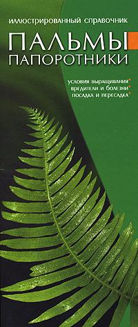 Пальмы. Папоротники