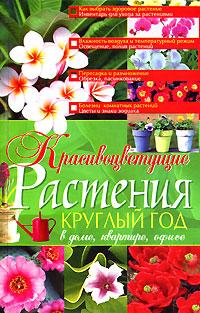 Красивоцветущие растения круглый год