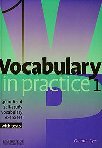 Vocabulary in Practice 1