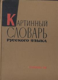 Картинный словарь русского языка