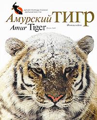 Амурский тигр. Фотоальбом / Amur Tiger. Picture Book. Виктор Юдин, Александр Баталов, Юрий Дунишенко