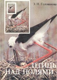 Птицы над полями