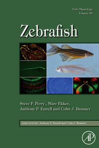 Zebrafish,29