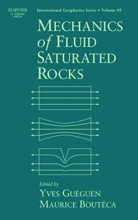Mechanics of Fluid-Saturated Rocks,89