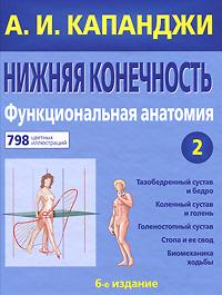 Нижняя конечность. Функциональная анатомия. Том 2. А. И. Капанджи