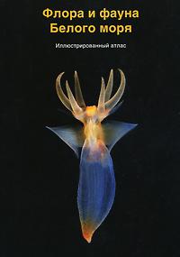 Флора и фауна Белого моря. Иллюстрированный атлас