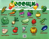 Овощи. Плакат