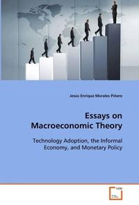 macroeconomic view essay