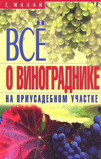 Все о винограднике на приусадебном участке
