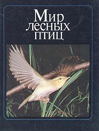 Мир лесных птиц