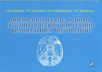 Морфологические основы остеопатической коррекции краниальных нейропатий