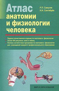 Атлас анатомии и физиологии человека12296407Настоящее учебное пособие является первым отечественным изданием, в котором наряду со сведениями по анатомии органов и систем человеческого организма указаны выполняемые ими функции. Атлас включает около 500 рисунков, схем и таблиц, дающих представление об организме как о единой саморегулирующейся, способной к самовосстановлению системе, и подробный пояснительный текст для более ясного представления о структурно-функциональных особенностях органов и систем человеческого тела. Пособие рекомендовано студентам учреждений среднего профессионального образования, изучающим в ходе подготовки курсы Анатомия и физиология с патологией, а также Анатомо-физиологические аспекты здоровья человека для специальностей Медико-профилактическое дело, Акушерское дело, Сестринское дело и других медико-биологических специальностей.