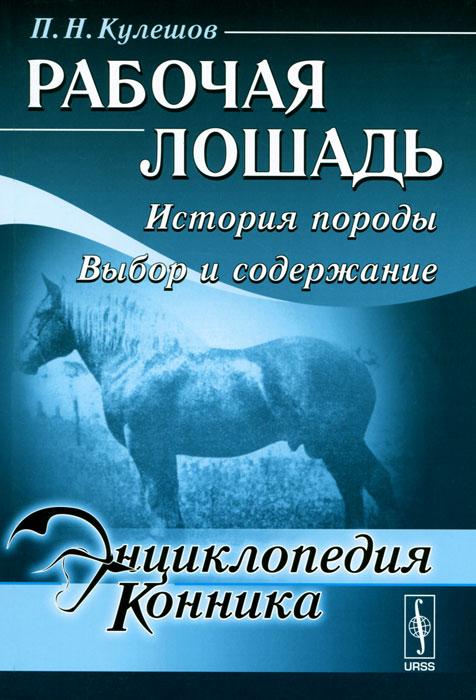 Рабочая лошадь. История породы. Выбор и содержание