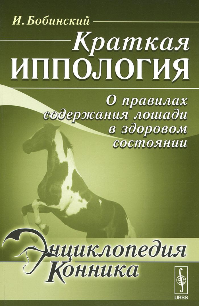 Краткая иппология. О правилах содержания лошади в здоровом состоянии
