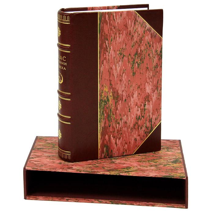Атлас анатомии человека (подарочное издание)
