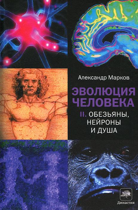 Читать книгу Шпаргалка: Основы биохимии.