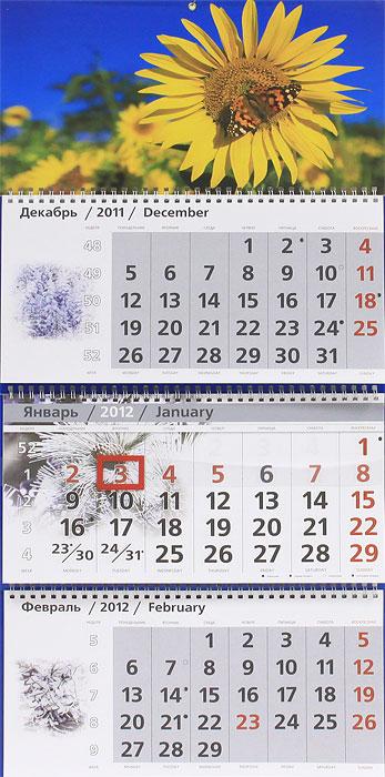 Календарь-2012(кв.тр)Подсолнух 01.05.184