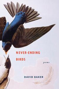 Never–Ending Birds – Poems