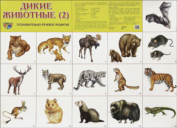 Дикие животные (2). Плакат