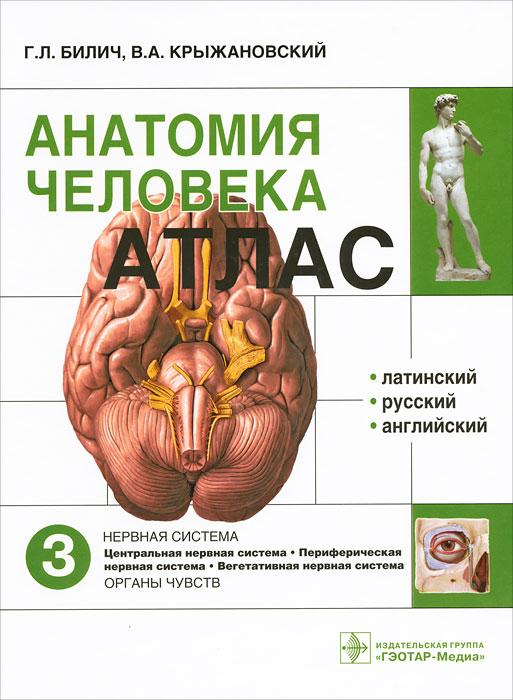 Анатомия человека. Атлас. В 3 томах. Том 3. Г. Л. Билич, В. А. Крыжановский