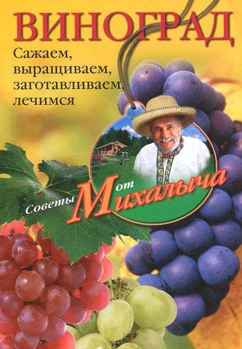 Звонарев Н.М..Виноград. Сажаем, выращиваем, заготовляем, лечимся.. Звонарев Н.М.