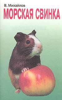 Морская свинка: Животные в нашем доме