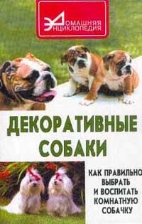 Декоративные собаки. Как правильно выбрать и воспитать комнатную собачку [randomtext category=