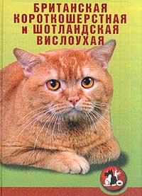 Кошки. Британская короткошерстная и шотландская вислоухая
