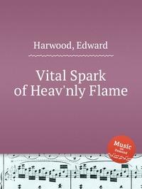 depreciation and vital spark essay