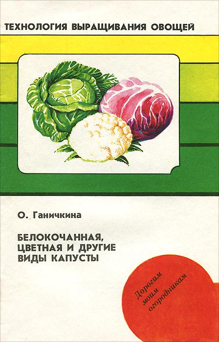 Белокачанная, цветная и другие виды капусты