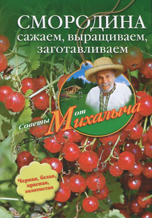 Смородина. Сажаем, выращиваем, заготавливаем ( 978-5-227-03695-7 )