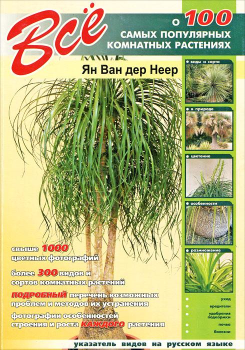 Все о 100 самых популярных комнатных растениях