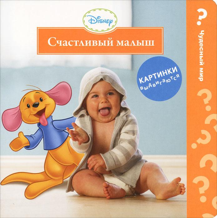 Disney baby. Счастливый малыш. Книжка-игрушка ( 978-5-353-05395-8 )