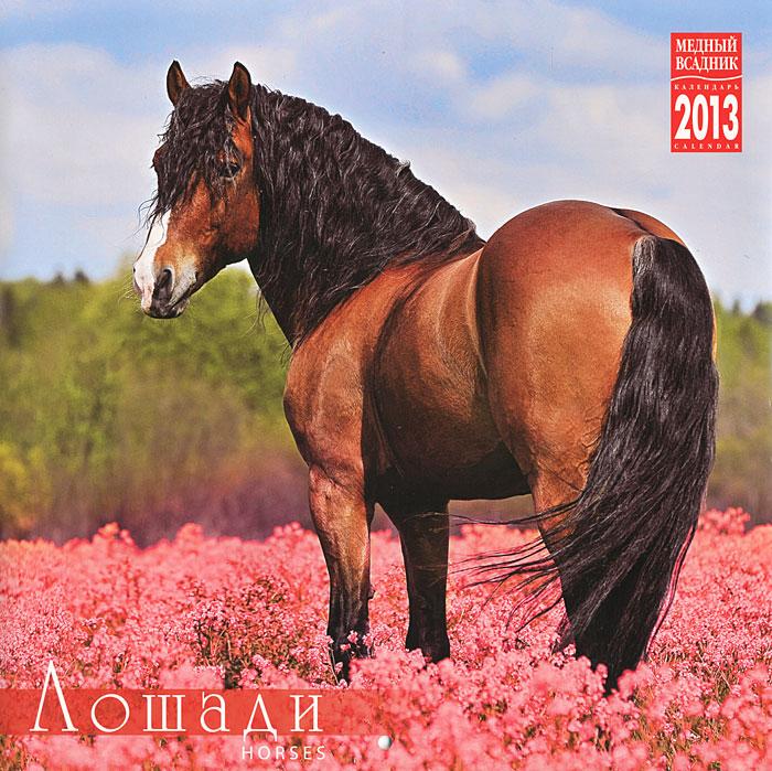Календарь 2013 на скрепке лошади horses