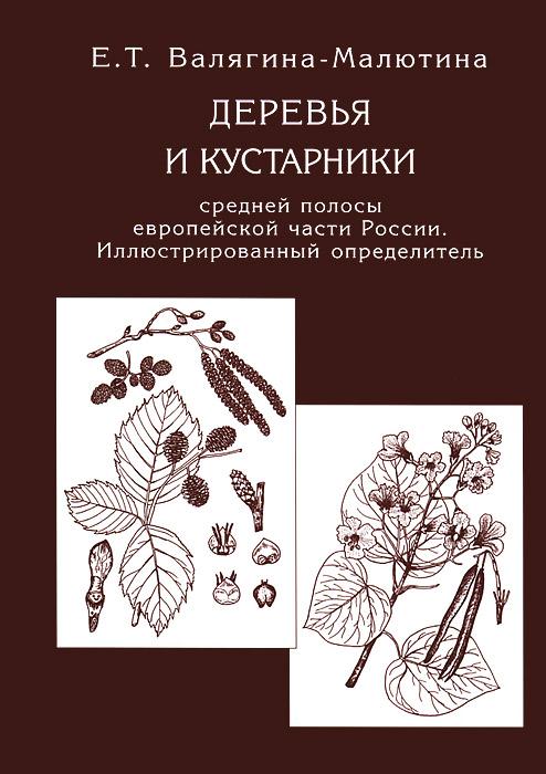 Деревья и кустарники средней полосы европейской части России