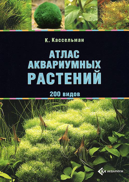 Дизайн аквариума - нижегородский форум любителей