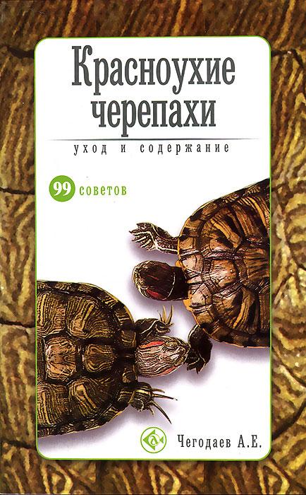 Красноухие черепахи. Уход и содержание