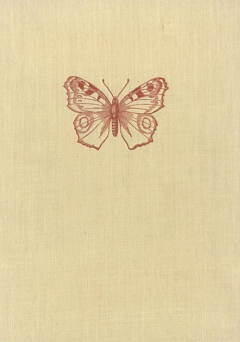 Маленький атлас бабочек