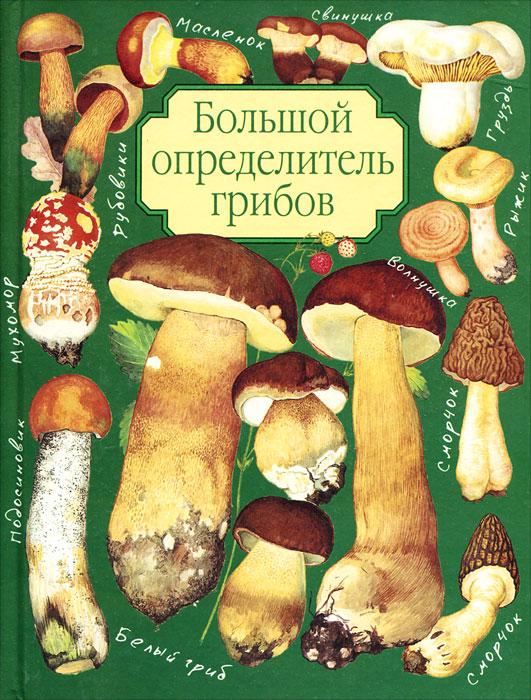 Большой определитель грибов