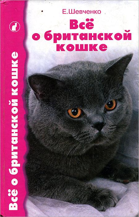Все о британской кошке