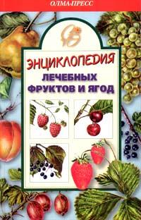 Энциклопедия лечебных фруктов и ягод