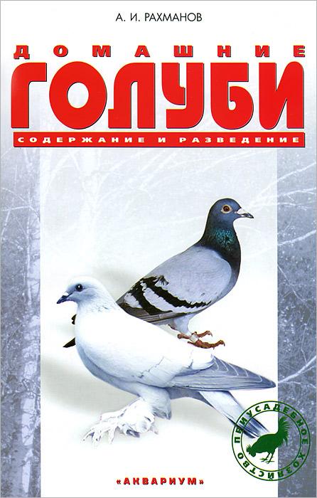 Домашние голуби. Содержание и разведение
