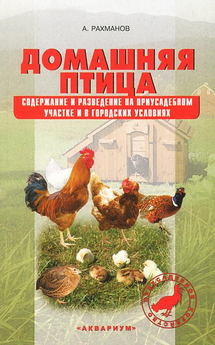 Домашняя птица. Содержание и разведение на приусадебном участке и в городских условиях