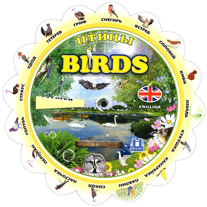 Birds / Птицы. Тематический словарь