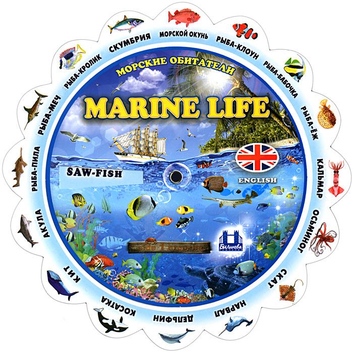 Marine Life / Морские обитатели. Тематический словарь