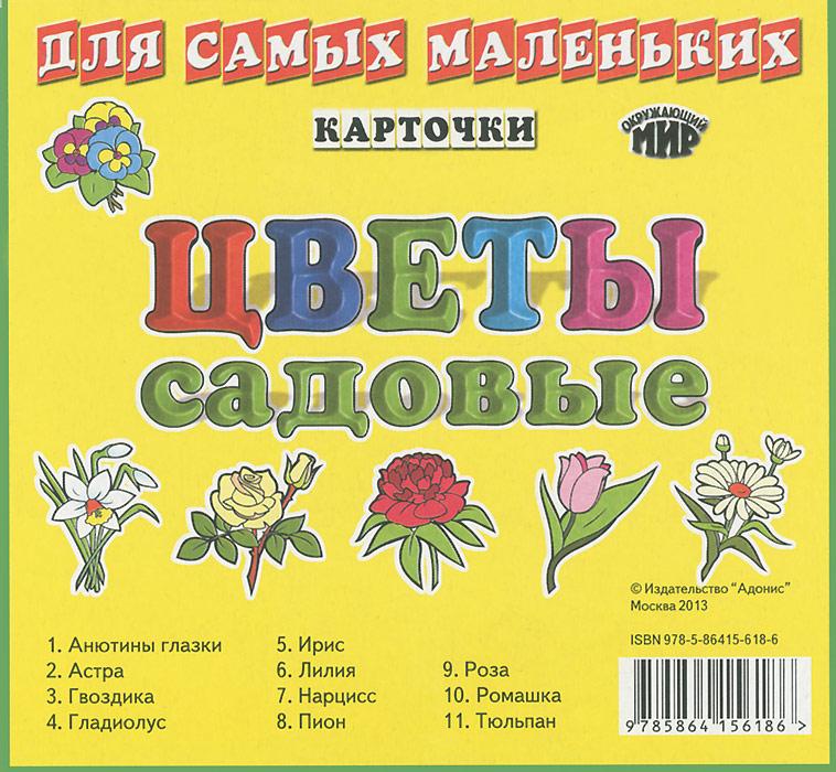 Цветы садовые (набор из 11 карточек)