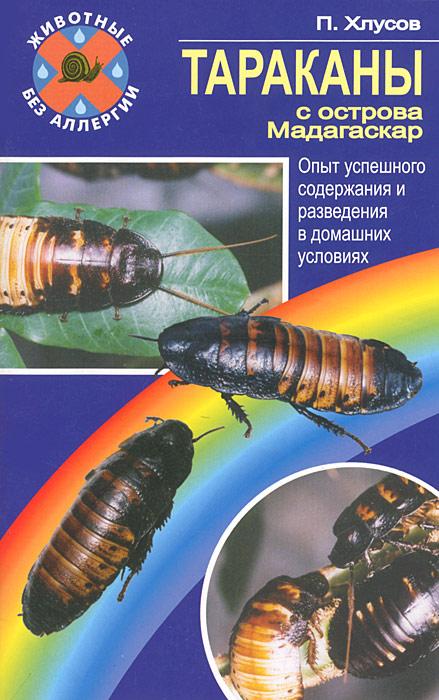Тараканы с острова Мадагаскар. Опыт успешного содержания и разведения в домашних условиях ( 978-5-9934-0122-5 )