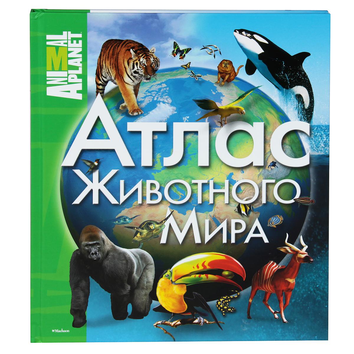 Атлас животного мира12296407Этот атлас позволит читателям познакомиться с фауной различных континентов, узнать, какие животные водятся в разных странах мира, какова среда их обитания и как они приспосабливаются к экстремальным условиям жаркой пустыни и арктической тундры, высокогорья и мангровых болот. Прекрасные редкие фотографии, красочные рисунки, цветные карты помогут детям и взрослым совершить увлекательную прогулку по разным уголкам нашей планеты.