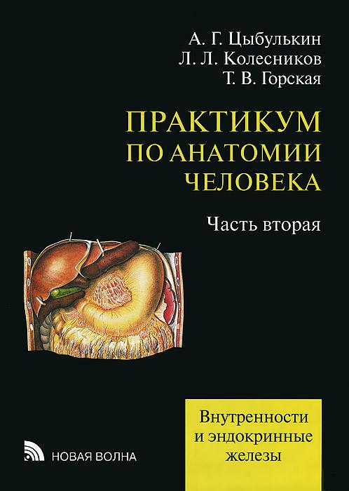 Практикум по анатомии человека. В 4 частях. Часть 2. Внутренности и эндокринные железы